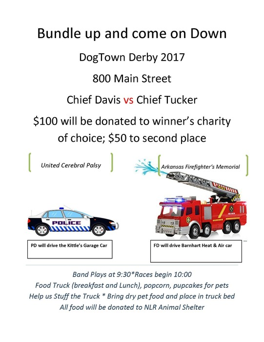 Dogtown Derby Flyer